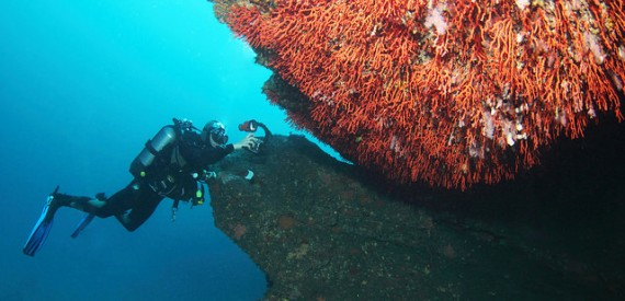 Meerestiefen von Korsika
