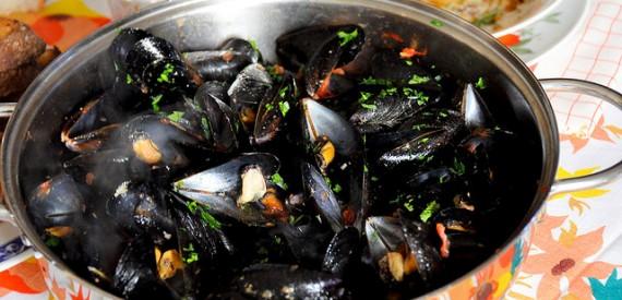 mussels Corsica