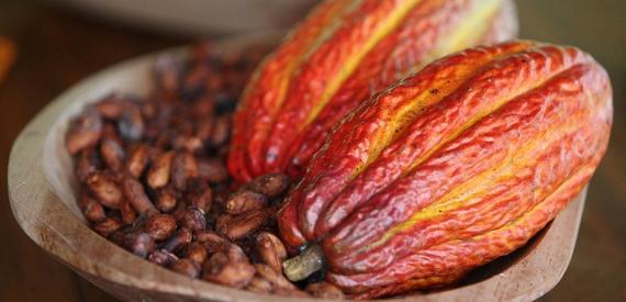 chocolat bastia 2015
