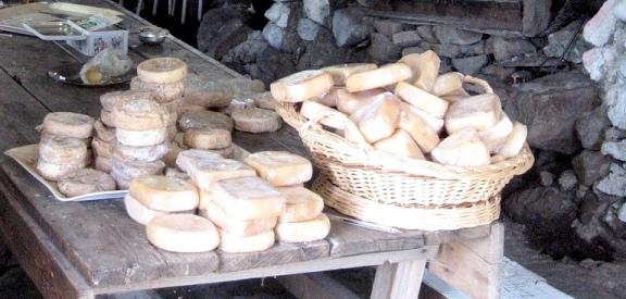 brocciu cheese Corsica