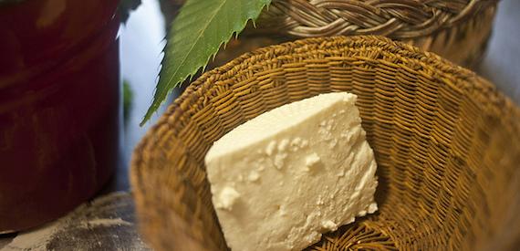 Corsican cheeses