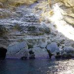 grotte di Bonifacio