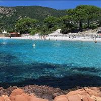 Corsica del sud spiagge
