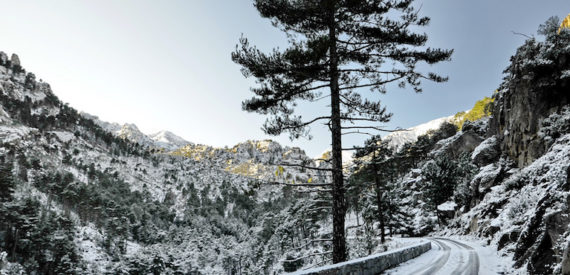 Trail blanc de la Restonica 2018