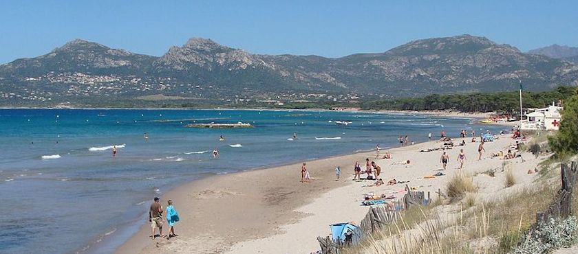 Calvi Corsica spiagge