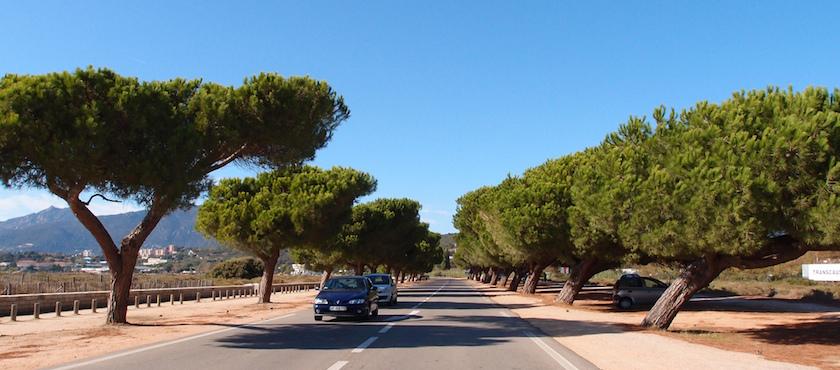 Corsica con o senza auto